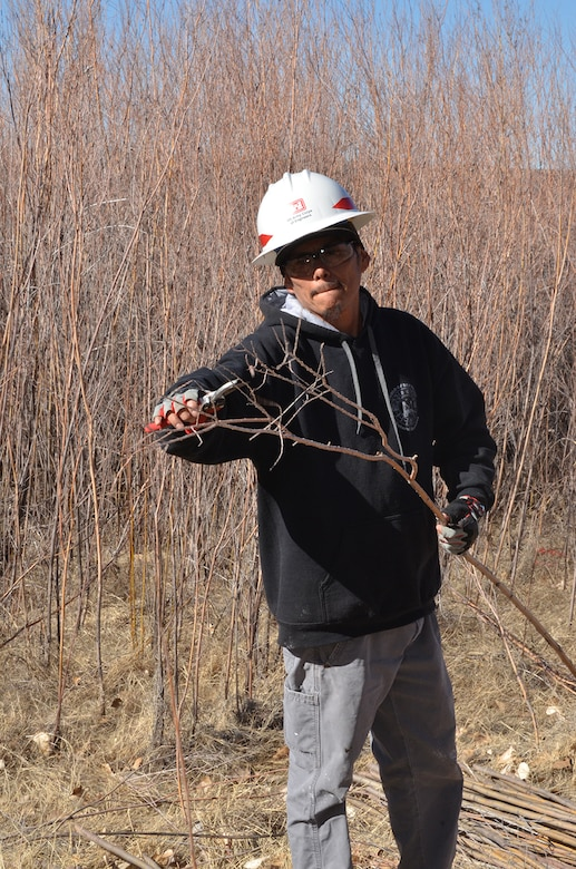 COCHITI LAKE, N.M. - A workshop participant cuts the leaves and branches off of a willow pole during the hands-on riparian construction workshop held February 26-27. The poles were transported to preselected locations, with no vegetation, within the Cochiti Lake area for replanting.