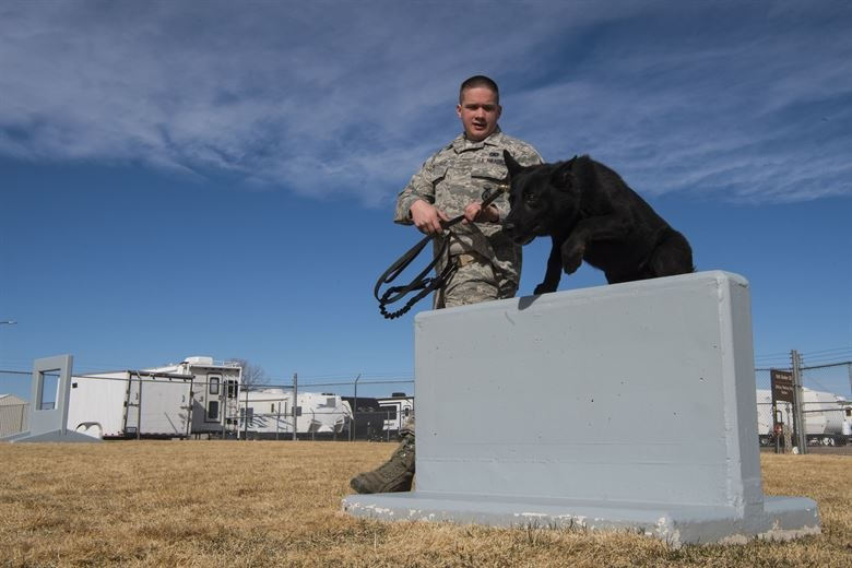 Senior Airman Christopher Alexander, 90th Security Forces Squadron military working dog handler, trains with his MWD, Kormi, at F.E. Warren Air Force Base, Wyo., March 16, 2017. The dogs and their handlers are constantly training for new deployment capabilities. (U.S. Air Force photo by Staff Sgt. Christopher Ruano)