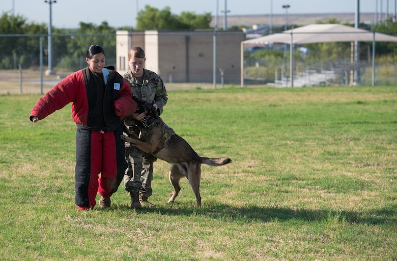 Military Working Dog Stamp Ceremony