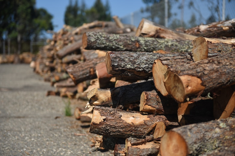 Reuseable wood scraps as well as uncut logs, rounds and tree limbs are available for free to anyone with base access. The Vandenberg Recycling Center also hosts free split firewood giveaways during select dates throughout the year.