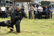 The 8th Security Forces Squadron provide a military working dog demonstration for the Korean National Police Gunsan City branch members at Kunsan Air Base, Republic of Korea, Aug. 20, 2019. The KNP visited the 8th SFS for a tour to learn about the different defensive measures of the base. (U.S. Air Force photo by Staff Sgt. Joshua Edwards)