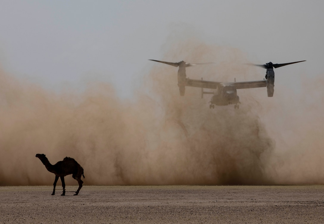 CAMP BEUHRING, Kuwait (April 12, 2019) – April 11, 2019 The training sharpens Marines' skills and prepares the 22nd MEU to deploy at a moment's notice. Marines and Sailors with the 22nd MEU and Kearsarge Amphibious Ready Group are currently deployed to the U.S. 5th Fleet area of operations in support of naval operations to ensure maritime stability and security in the Central region, connecting the Mediterranean and the Pacific through the western Indian Ocean and three strategic choke points. (U.S. Marine Corps photo by Sgt. Aaron Henson/Released)