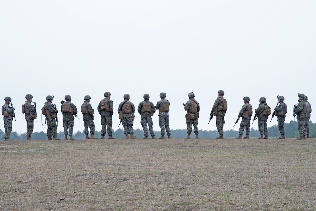 A group of Marines stand in a line.