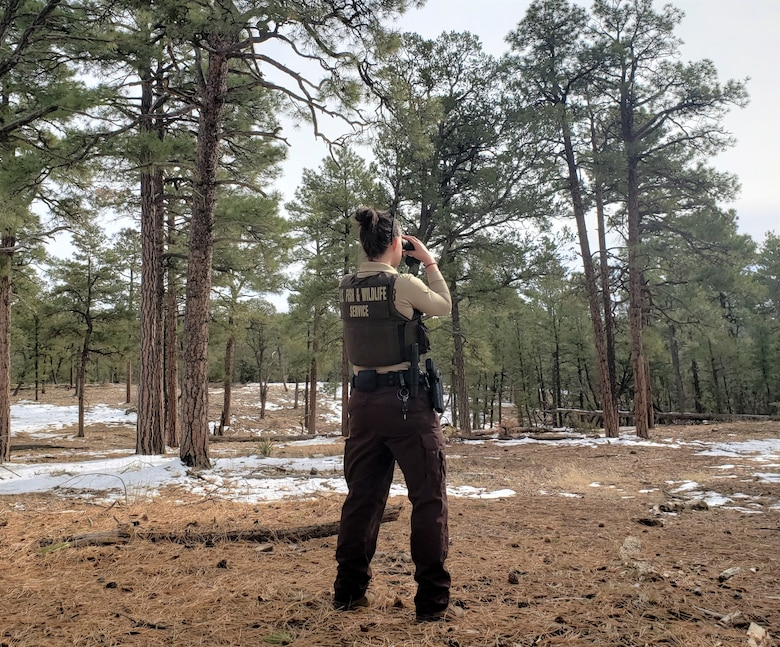 U.S. Fish and Wildlife federal wildlife officer, scans the withdrawn area at Kirtland Air Force Base, New Mexico.