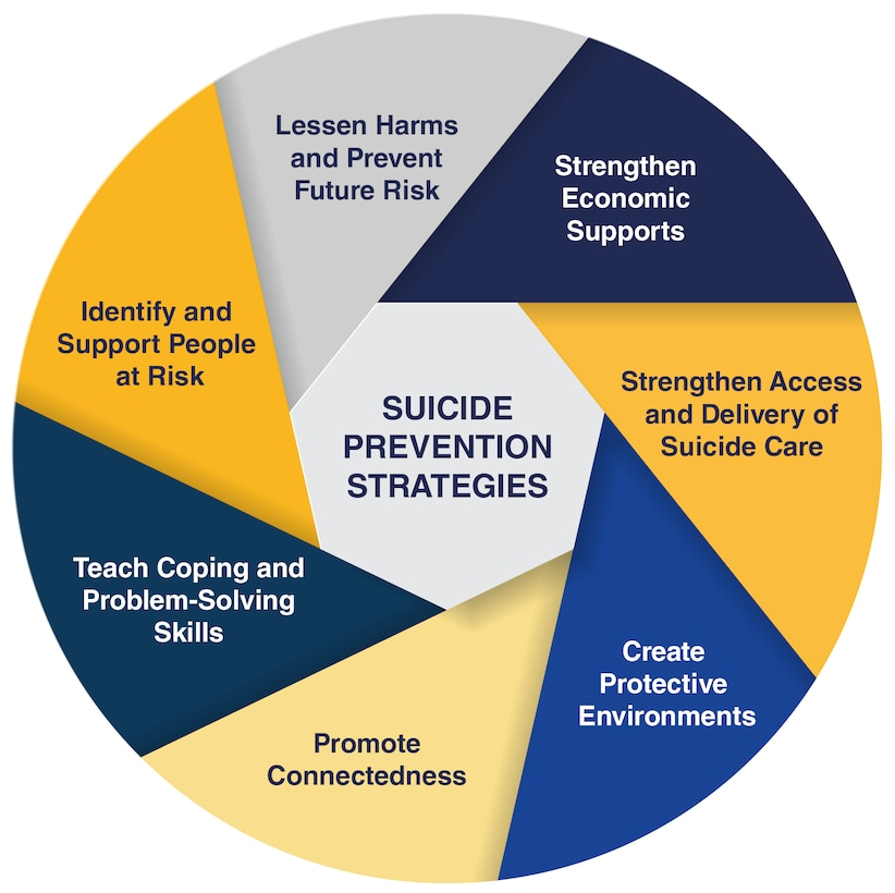 Suicide Prevention Strategies graphic