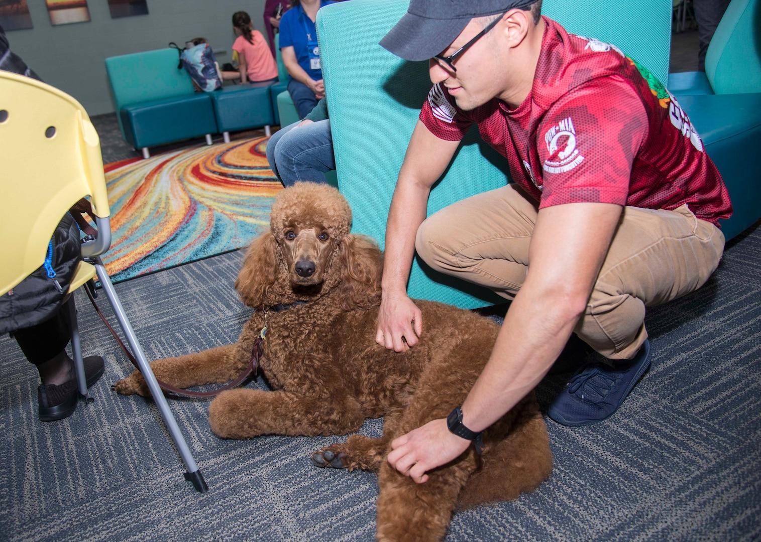Therapy Animals of San Antonio
