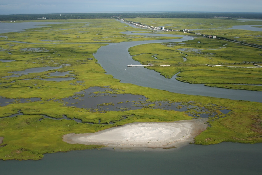 USACE partnered with New Jersey and The Wetlands Institute to create nesting bird habitat at Ring Island near Stone Harbor, N.J. Sandy dredged material was placed on the site in 2014 and 2018. The newly created nesting bird habitat has been successfully utilized by state endangered birds species.