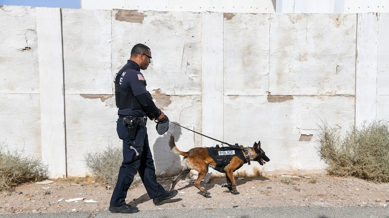 Sgt. Damian Williams, Fort Irwin Police Department, and his partner Cash look for planted narcotics during a joint Military Working Dog training session at the National Training Center on Fort Irwin, California, Dec. 11. (Air Force photo by Giancarlo Casem)