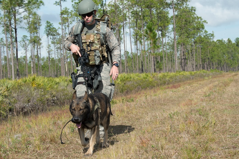 U.S. Air Force Staff Sgt. Brian Lepes, a 6th Security Forces Squadron (SFS) military working dog (MWD) handler, and MWD Zeno, walk along a road during a field training exercise Dec. 11, 2019, at Avon Park Air Force Range, Fla.  The 6th SFS MWD handlers trained on explosive ordnance detection procedures with the 6th Civil Engineer Squadron explosive ordnance disposal flight, to better integrate training between units.