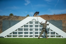 U. S. Marine Corps Cpl. Zachary Devaney, a military working dog handler with the Provost Marshal's Office, Security and Emergency Services Battalion, directs military working dog, Don, through the obedience course at Marine Corps Base Camp Pendleton, California, Dec. 17, 2019 Handlers and their K9, spend over 50 hours training and developing their bond every week.