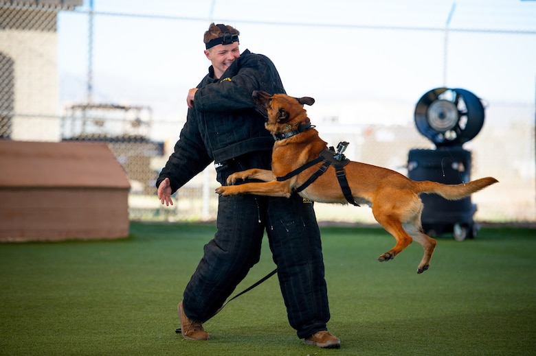 Senior Airman demonstrates K-9 bite training with MWD