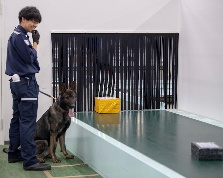 Yokota MWD team train with Tokyo Customs