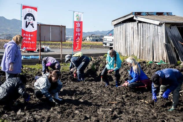 Learning the roots: station residents dig lotus roots