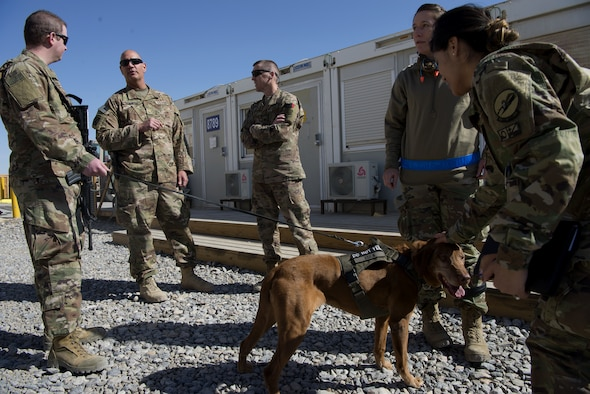 Air Force religious affairs Airmen from the 451st Air Expeditionary Group teamed up with Army behavioral Soldiers from Train Advise and Assist Command-South Feb. 2, 2019 at Kandahar Airfield, Afghanistan.