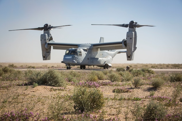 A MV-22B Osprey sits on the landing strip at AUX II, one of the training ranges that belongs to Marine Corps Air Station Yuma, as a U.S. Marine assigned to Marine Wing Support Squadron 371 (MWSS-371) provides security, Jan. 22, 2019.  During this portion of the training exercise, the bulk fuels specialists of MWSS-371 practiced setting up security for an MV-22B Osprey landing at AUX II. The MV-22B is a tiltrotor aircraft with both vertical takoff and landing (VTOL), and short takeoff and landing capabilities (STOL) and is the primary assault support aircraft for the U.S. Marine Corps. MCAS Yuma is a prime location to conduct military training with its variety of different training range; both foreign military units and all branches of the U.S. military that visit the air station utilize the ranges throughout the year. (U.S. Marine Corps photo by Cpl. Isaac D. Martinez)