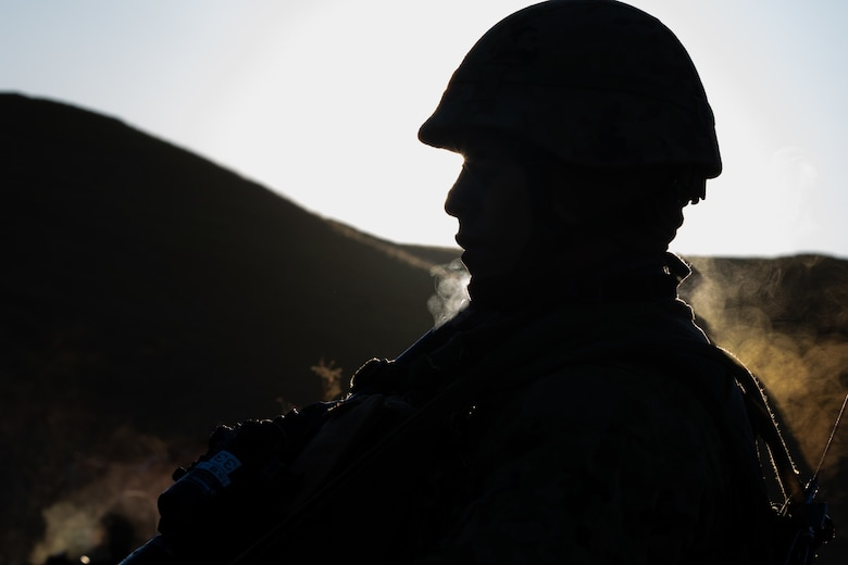 Soldiers from the 1st Amphibious Rapid Deployment Brigade, Japan Ground Self-Defense Force (JGSDF) conduct individual and small-unit maneuver exercises during Iron Fist at Marine Corps Base Camp Pendleton, California, February 6, 2019. Exercise Iron Fist is an annual, bilateral amphibious training exercise designed to improve U.S. Marine Corps and the JGSDF's ability to plan, communicate and conduct combined amphibious operations.
