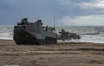 U.S. Marines assigned to 1st division and Japan Ground Self-Defense Force (JGSDF) Soldiers with 1st Amphibious Rapid Deployment Regiment, come ashore in assault amphibious vehicles during an amphibious landing exercise for Iron Fist 2019, Feb. 4, on U.S. Marine Corps Base Camp Pendleton, CA