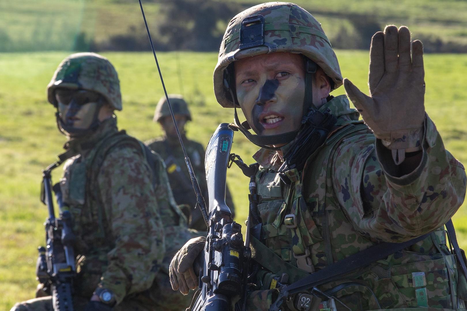 Iron Fist 2019 Strengthens U.S.-Japan Alliance; Certifies Amphibious Rapid Deployment Brigade