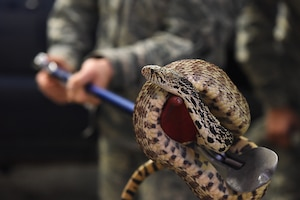 Staff Sgt. Kelly Hamilton, 341st Civil Engineer Squadron pest management craftsman, simulates catching a snake Feb. 13, 2019, at Malmstrom Air Force Base, Mont.