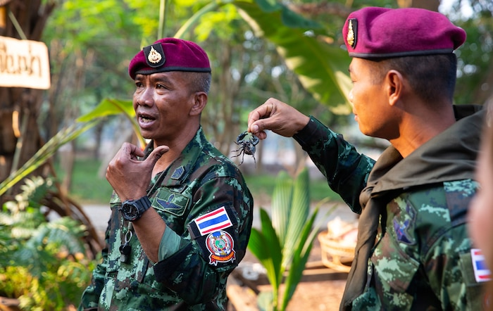 U.S., Thai Soldiers Train on Jungle Survival, Basic Rifle Marksmanship, Room Clearing Procedures