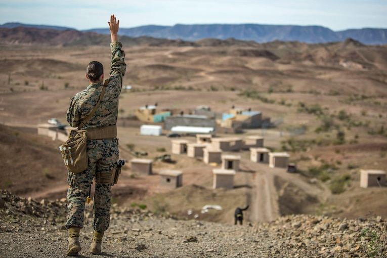 A Marine raises her arm as a dog in the distance runs toward her up a hill in desert terrain.