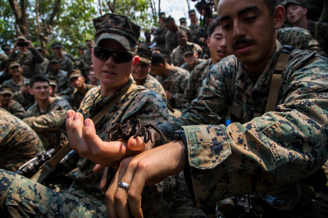 A tarantula crawls over the hand of a Marine as others look on.