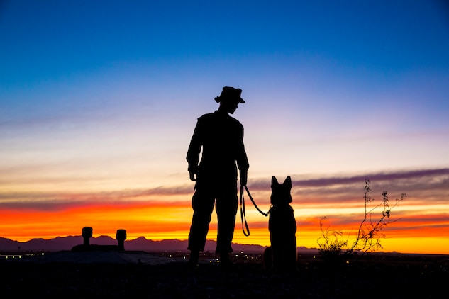 U.S. Marine Corps Sgt. Jenna L. Cauble, dog handler, with the Provost Marshall's Office, K9 Section, Headquarters and Headquarters Squadron, Marine Corps Air Station (MCAS) Yuma, poses for a silhouette photograph with her Military Working Dog (MWD) on MCAS Yuma, Jan. 18, 2019. MWD's are trained to subdue or intimidate suspects before having to use lethal force; they are also used for detecting explosives, narcotics, and other harmful materials. (U.S. Marine Corps photo by Sgt. Allison Lotz)