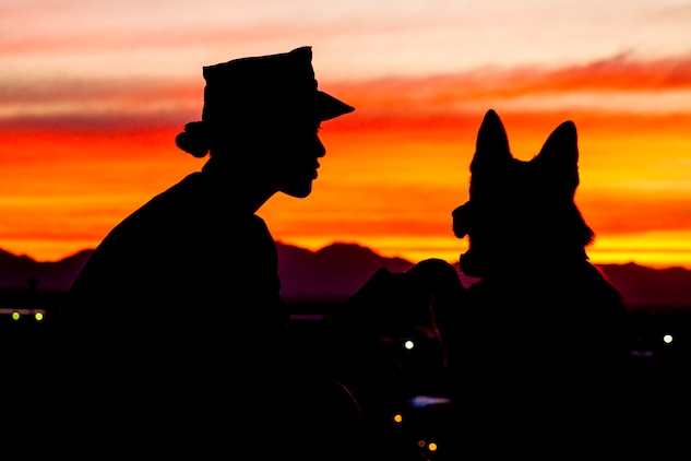 U.S. Marine Corps Sgt. Jenna L. Cauble, dog handler, with the Provost Marshall's Office, K9 Section, Headquarters and Headquarters Squadron, Marine Corps Air Station (MCAS) Yuma, poses for a silhouette photograph with her Military Working Dog (MWD) Ken on MCAS Yuma, Jan. 18, 2019. MWDs are trained to subdue or intimidate suspects before having to use lethal force; they are also used for detecting explosives, narcotics, and other harmful materials. (U.S. Marine Corps photo by Sgt. Allison Lotz)