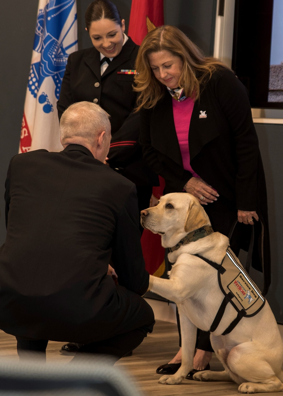 A man kneels to appoint a service dog as honorary hospital corpsman.