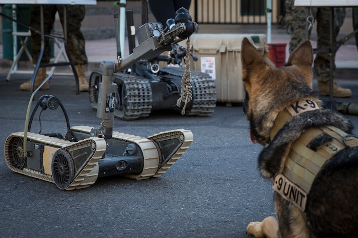 U.S. Marine Corps Military Working Dog Cato visits the Explosive Ordnance Disposal booth during Yuma Military Appreciation Day in Downtown Historic Yuma on Feb. 16, 2019. Military Appreciation Day is held to show the importance of the relationship between the City of Yuma and our service members and veterans. (U.S. Marine Corps photo by Sgt. Allison Lotz)