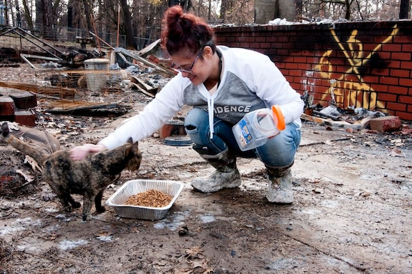 "Mary Gowins feeds a neighborhood cat she has taken care of for the past seven years in Paradise, California, Dec. 17, 2018. ""Patches"" had been lost since the Camp Fire erupted on Nov. 8, 2018. Mary checked Butte County animal rescue websites daily in the hope that her beloved feline escaped the flames. (U.S. Air Force photo by Staff Sgt. Taylor Workman)"