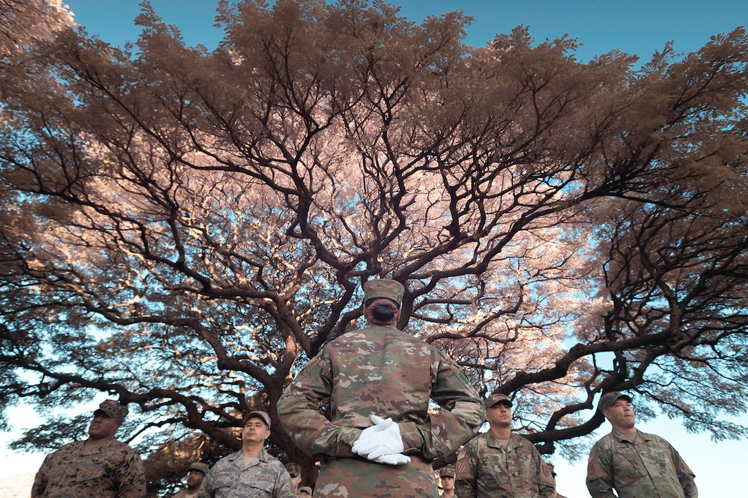 Service members stand by a tree during a ceremony.