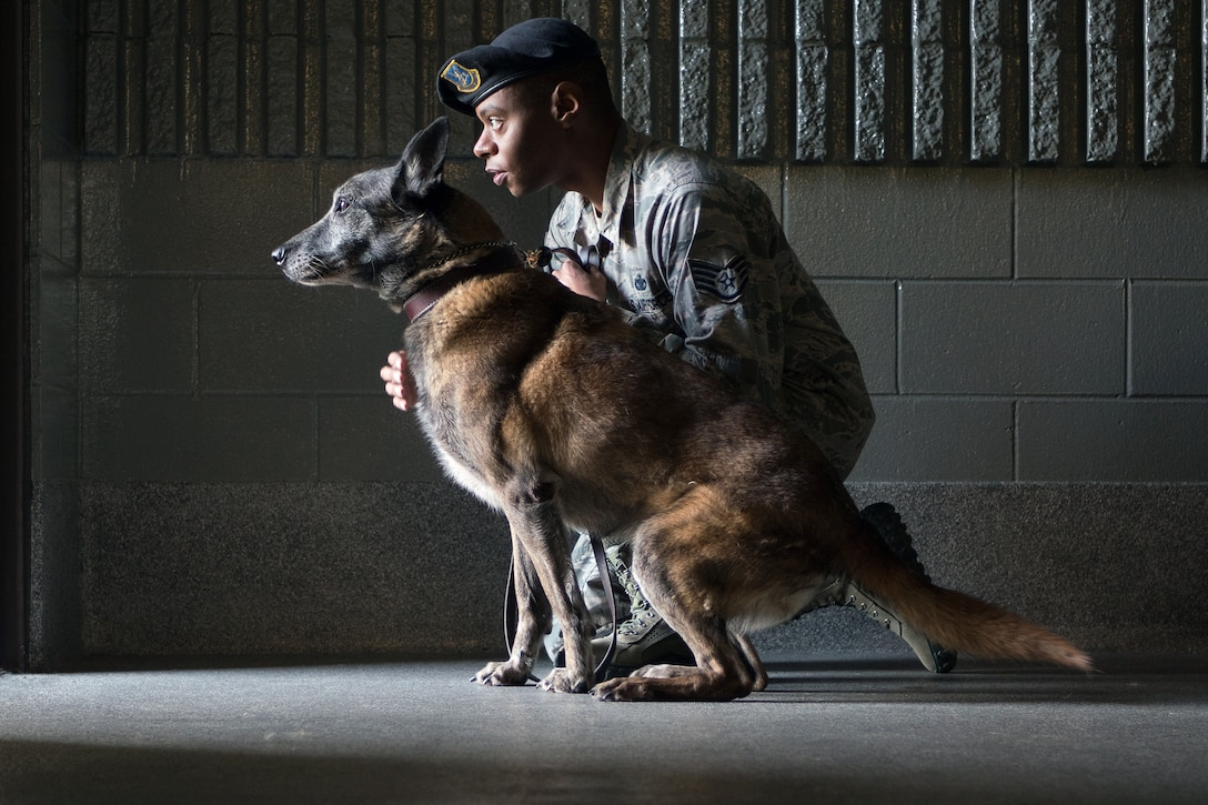 Staff Sgt. Christopher Bennett, 673rd Security Forces Squadron military working dog handler, works with Kimba, a Belgian Malinois