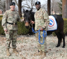 "Maj. Gen. Flem B. ""Donnie"" Walker, Jr., commanding general, left and Command Sgt. Maj. Bernard P. Smalls, Sr., both of the 1st Theater Sustainment Command, pose with Sgt. Blackjack, the official 1st mascot before the Assumption of Responsibility Ceremony, Jan 11. Smalls has been working as the CSM for the past 60 days and was officially recognized as the Command Sgt. Maj. for the 1st TSC."