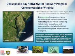 Chesapeake Bay Native Oyster Recovery Program Commonwealth of Virginia Purpose