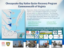Chesapeake Bay Native Oyster Recovery Program Commonwealth of Virginia Tributaries
