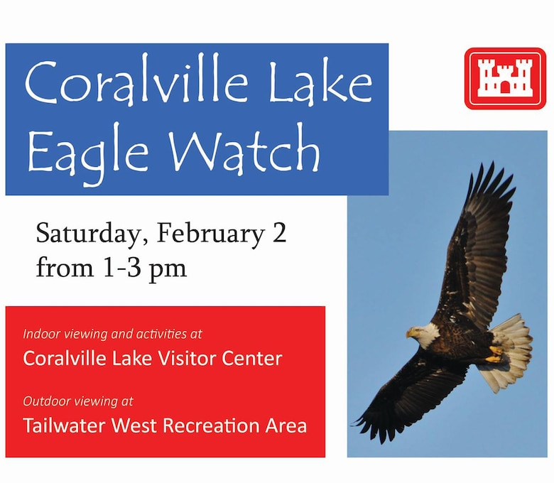 Coralville Lake Eagle Watch
