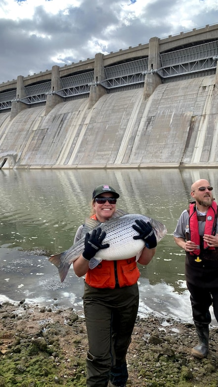 JOHN MARTIN RESERVOIR, Colo. -- USACE park ranger Valerie Thompson holds a striped bass in front of the stilling basin, Nov. 1, 2018.