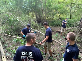 photo of Airmen clearing park area of invasive species