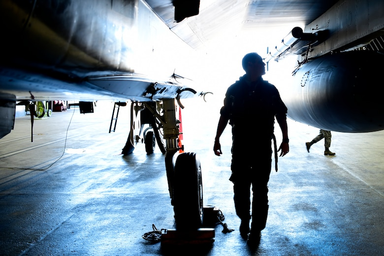 U.S. Air Force Lt. Col. Ryan Bernier conducts a pre-flight check of his F-15D Eagle in support of exercise Pointblank 19-2, at Royal Air Force Lakenheath, England, June 27, 2019. The objective of the exercise is to prepare coalition warfighters for a highly contested fight against near-peer adversaries by providing a multi-dimensional battle-space to conduct advanced training in support of US, UK and French national interests. (U.S. Air Force photo/ Tech. Sgt. Matthew Plew)