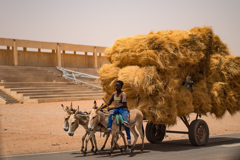 A Nigerien boy rides a donkey sidesaddle pulling straw through Agadez, Niger, June 27, 2019. Tourism was once prevalent in Agadez before the Tuareg rebellions of the late 20th and early 21st centuries. (U.S. Air Force photo by Staff Sgt. Devin Boyer)
