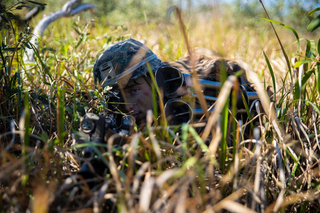 A Marine lies in a grassy field with his weapon pointed ahead.