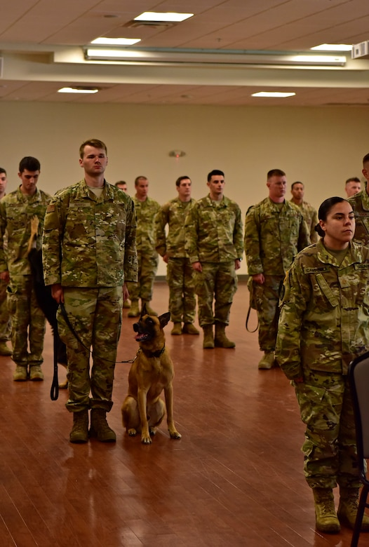 Military working dogs and handlers from the 11th Security Support Squadron attend a memorial service for canine, Tommy, at the Community Commons on Joint Base Andrews, Md., July 3, 2019. JBA has 27 dogs in their kennels, ranging from explosive detection to narcotics and patrol. (U.S. Air Force photo by Airman 1st Class Noah Sudolcan)