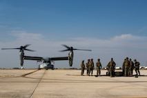 U.S. Marines with Special Purpose Marine Air-Ground Task Force-Crisis Response-Africa 19.2, Marine Forces Europe and Africa, prepare cargo during helicopter support team training with a U.S. Marine Corps MV-22B Osprey on Moron Air Base, Spain, July 9, 2019