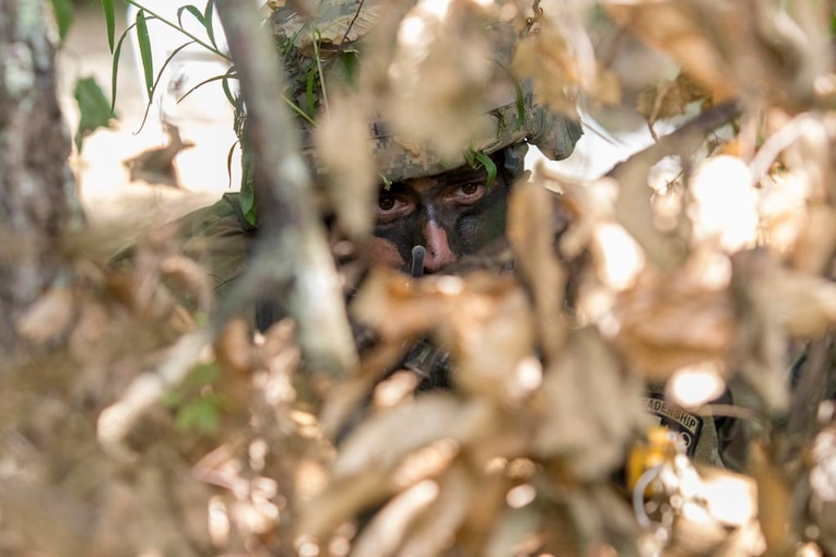 A soldier hides in brush.