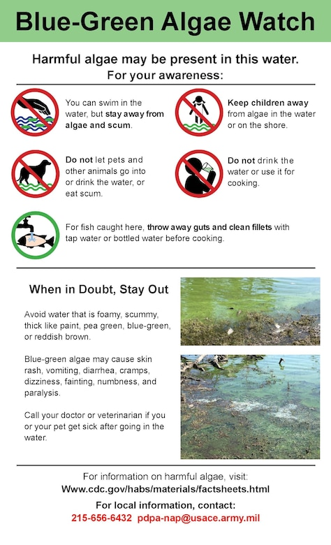 Blue Marsh Lake Algae Advisory