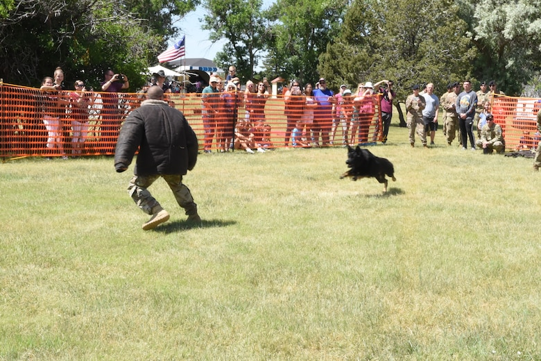 Staff Sgt. Curtis Shannon, 90th Security Forces Squadron military working dog handler, demonstrates Rio's K-9 capabilities during an exhibition at Fort D.A. Russell Days on F.E. Warren Air Force Base, Wyo., July 19, 2019. (U.S. Air Force photo by Terry Higgins)
