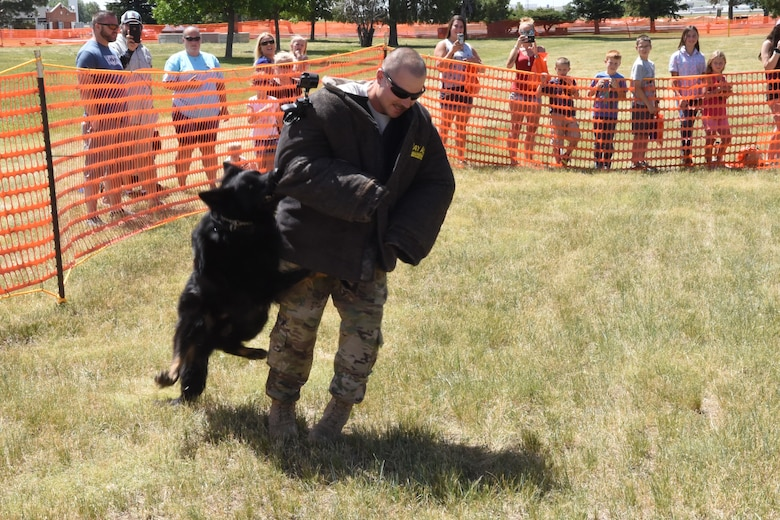 Staff Sgt. Curtis Shannon, 90th Security Forces Squadron military working dog handler, acts as non-compliant perpetrator during a K-9 exhibition at Fort D.A. Russell Days on F.E. Warren Air Force Base, Wyo., July 19, 2019. The open house gives the community the opportunity to see the history behind the base and its role within the nation's defense.  (U.S. Air Force photo by Terry Higgins)