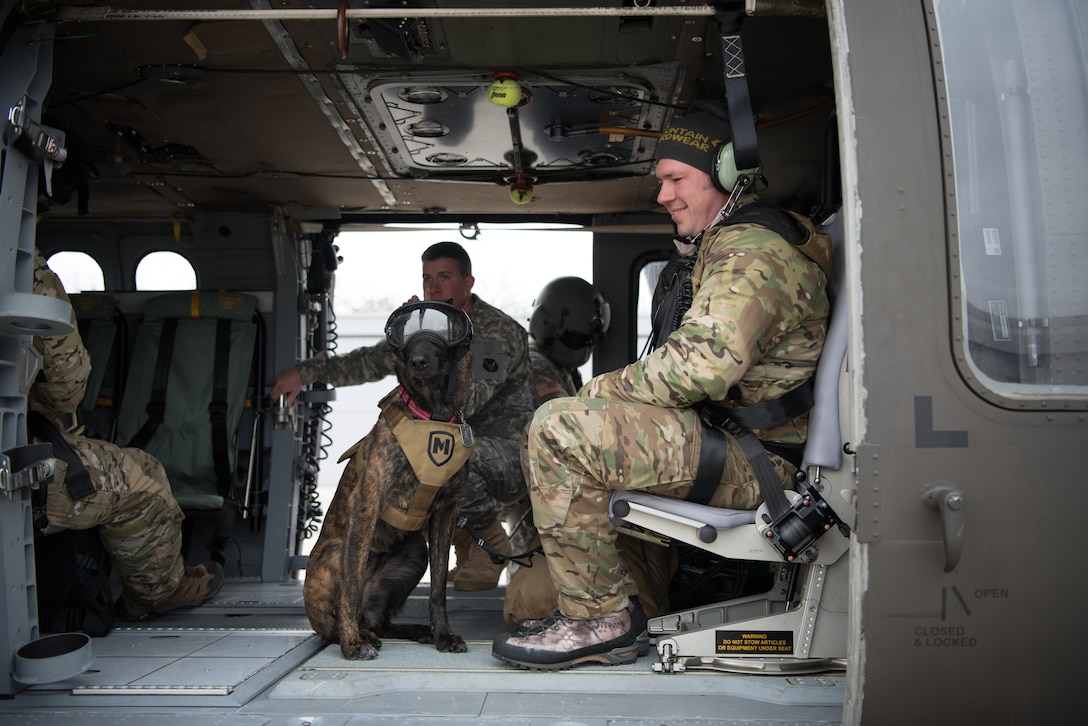Tech. Sgt. Rudy Parsons, a pararescueman with the Kentucky Air National Guard's 123rd Special Tactics Squadron, and his search and rescue dog, Callie, ride in a UH-60 Black Hawk helicopter as part of Callie's familiarization training at the Boone National Guard Center in Frankfort, Ky., Nov. 29, 2018. Callie is currently the only search and rescue dog in the Department of Defense. (U.S. Air National Guard photo by Staff Sgt. Joshua Horton)