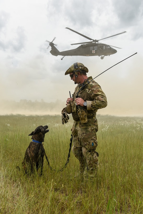 Master Sgt. Rudy Parsons, a pararescueman with the Kentucky Air National Guard's 123rd Special Tactics Squadron, and Callie, his search and rescue dog, participate in Patriot North, an annual domestic operations exercise designed to provide natural disaster-response training at Volk Field, Wis., July 17, 2019. Callie is currently the only search and rescue dog in the Department of Defense. (U.S. Air National Guard photo by Staff Sgt. Joshua Horton)